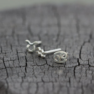 Load image into Gallery viewer, leave note - silver custom Zodiac stud earrings,Personalized Zodiac earrings,Sterling silver earrings,custom earrings,partner earrings,gift for her,