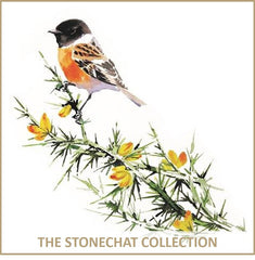Stonechat Collection