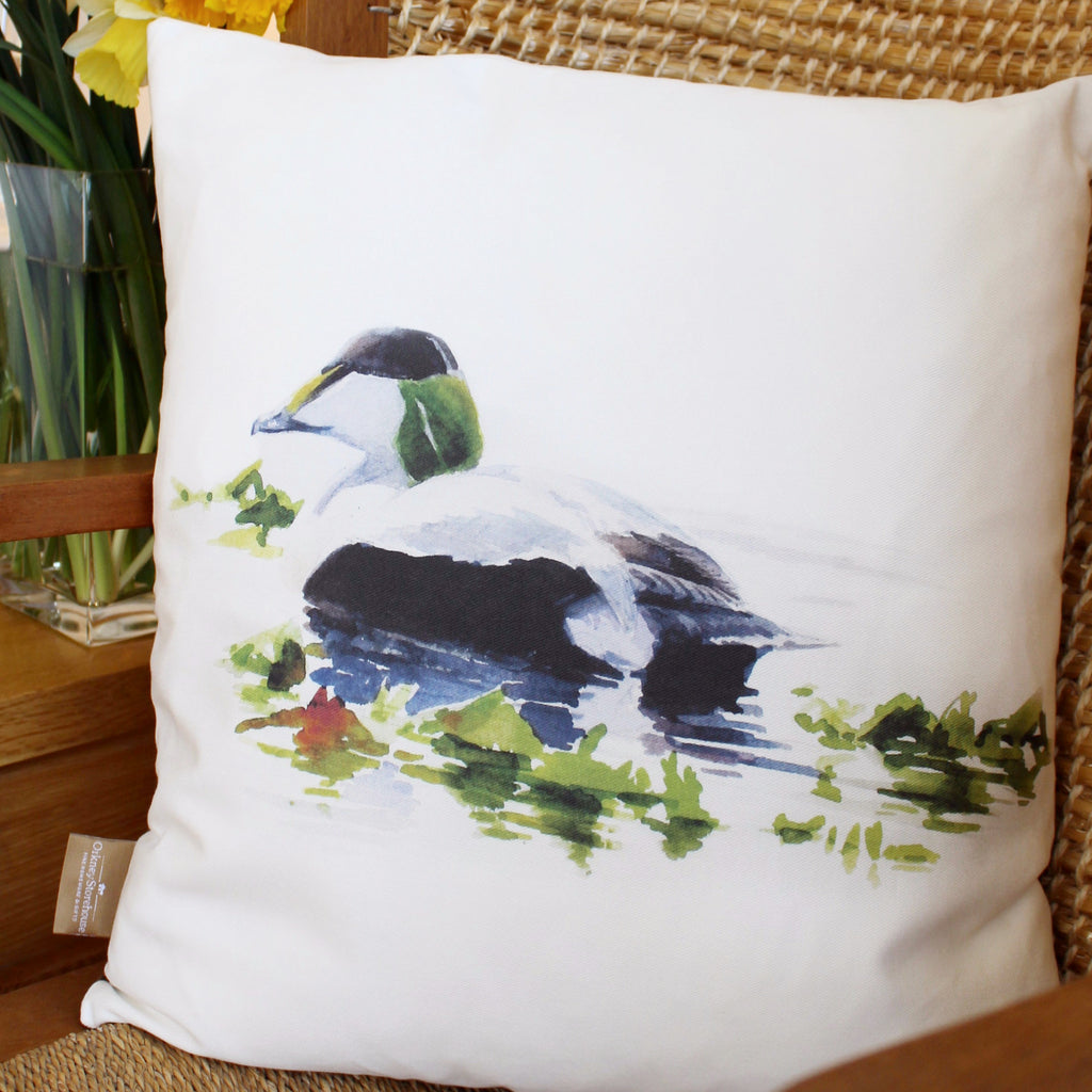 Orkney Storehouse | Eider Drake Cushion Lifestyle