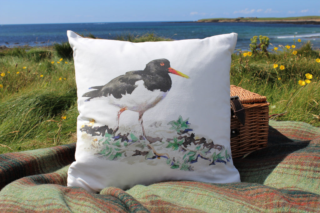 Orkney Storehouse | Oystercatcher Cushion Lifestyle Outdoors