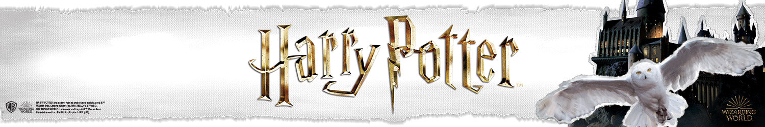 Harry Potter T-shirts, Hoodies, Mystery Boxes, Mugs, Posters and other accessories