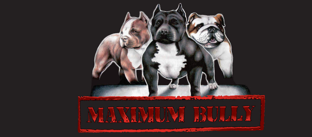 Maximum Bully Dog Food Review: Is It Worth It?