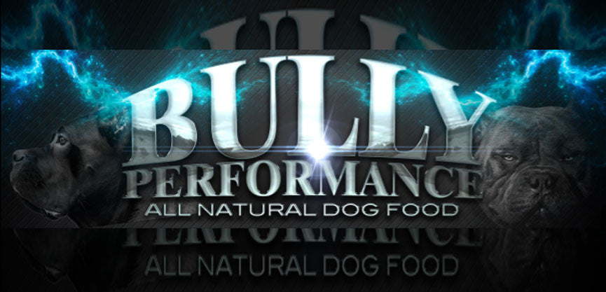 Bully Performance Dog Food Review