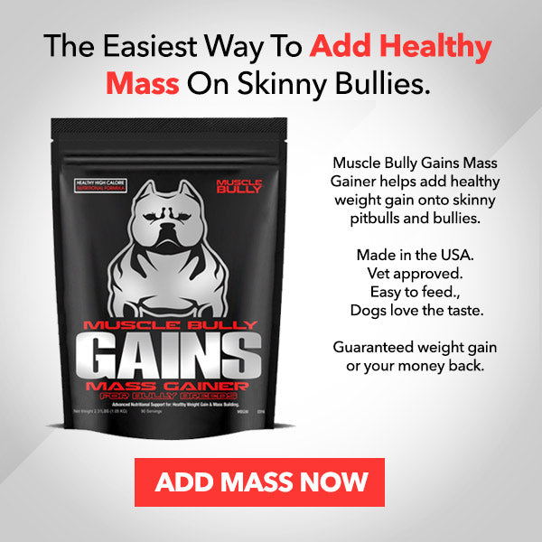 mass-gainer-for-dogs