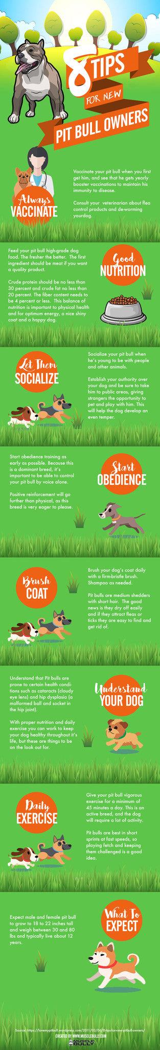 Pit Bull Tips for New Owners Raising This Beautiful Breed.