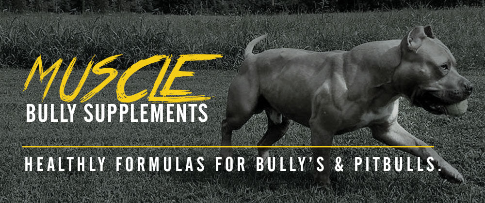 Healthy Natural Formulas For Bully's That Help Build Muscle, Add Mass And Improve Overall Health.