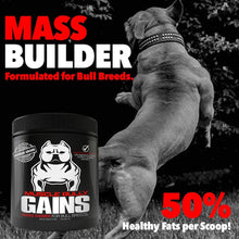 Load image into Gallery viewer, Muscle Gainer Stack (3 Pack Stack) Includes Muscle Bully Gains, Muscle Builder and Vita Bully Vitamins (Popular!)