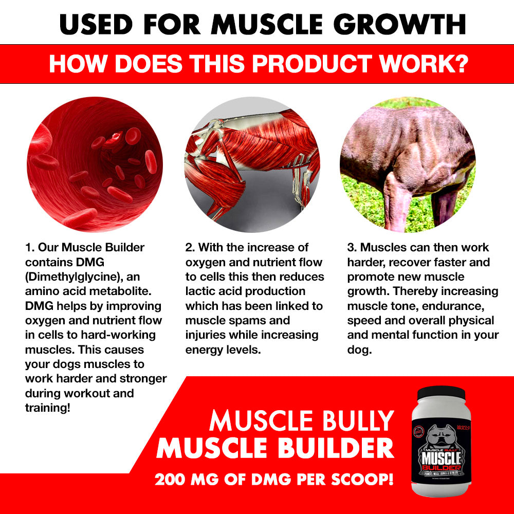 Muscle Building Supplement for Pitbulls and Bully's