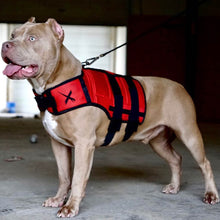 Load image into Gallery viewer, XDOG™ Weight Vest for Dogs, Build Healthy Muscle, Increase Size & Improve Overall Health.
