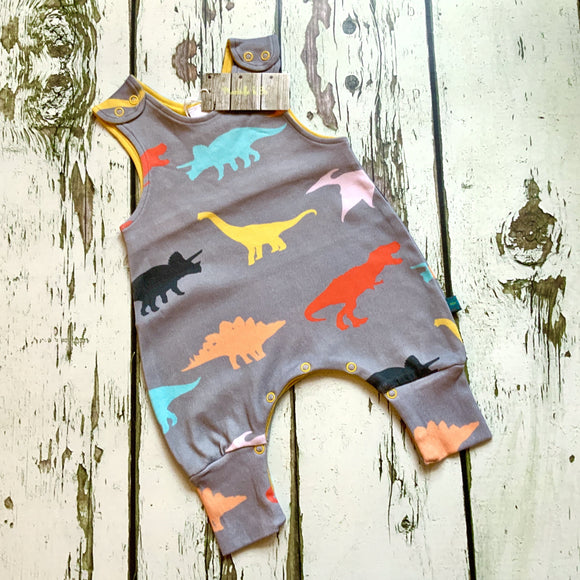 Dinosaur Baby Rompers, Hats, Mits & Gift Sets