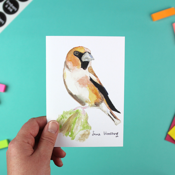 Hawfinch Greetings Card