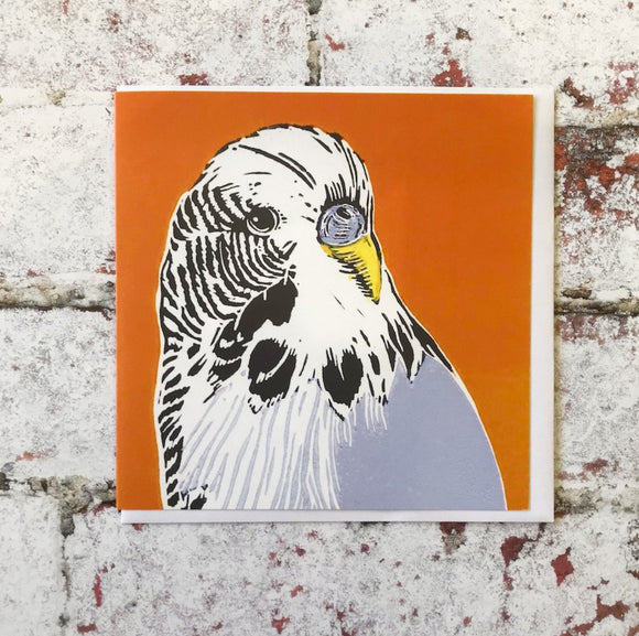 'Budgie' Art Card