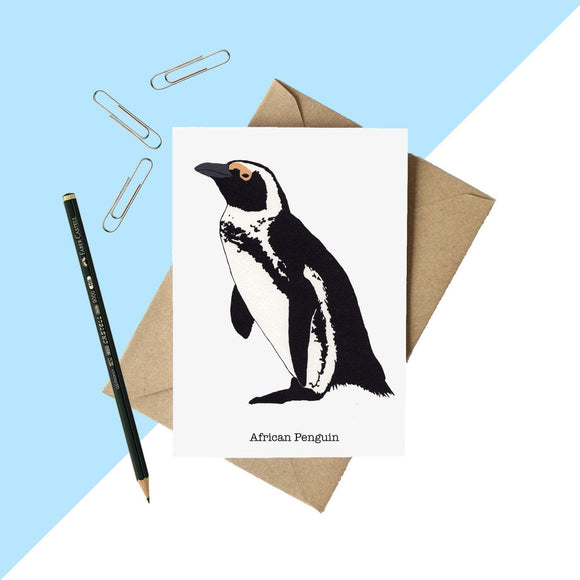 African Penguin Greetings Card