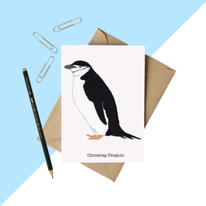 Chinstrap Penguin Greetings Card