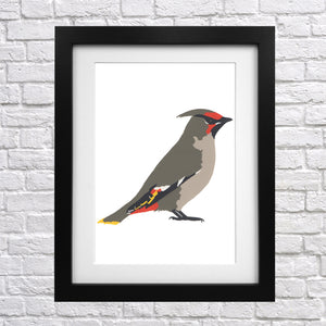 Waxwing Screen Print
