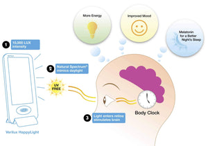 Regulate Your Circadian Rhythm & Sleep Better With Light