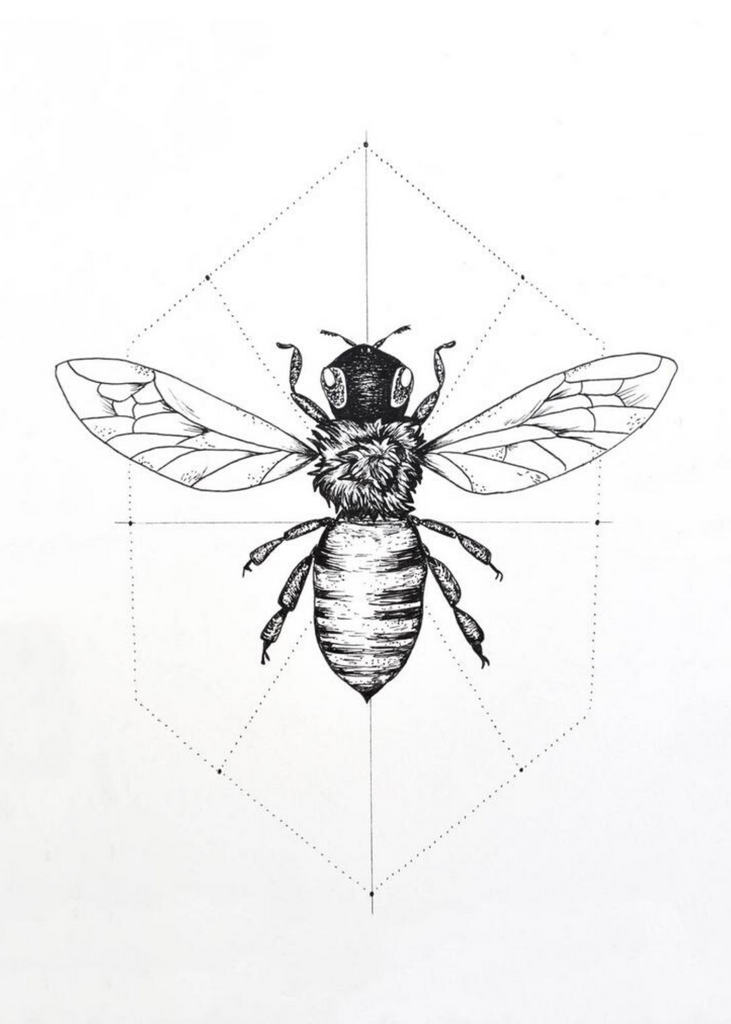 KATIE KING | Bee Print
