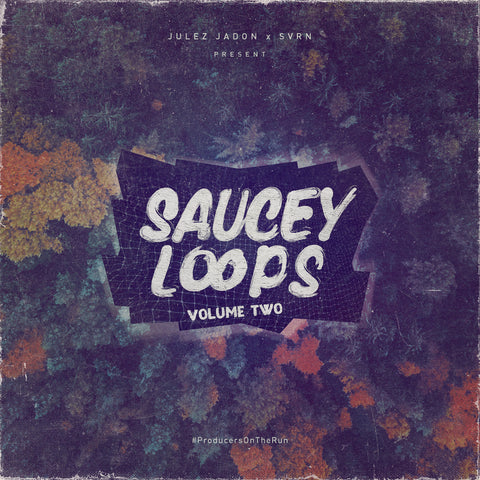 Saucey Loops Vol. II (Custom Sample Library)