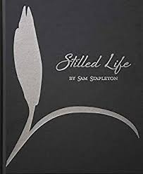 Stilled Life by Sam Stapleton.