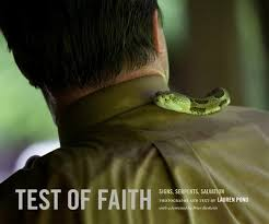 Test of Faith: Signs, Serpents, Salvation by Lauren Pond