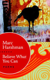 Believe What You Can by Marc Harshman