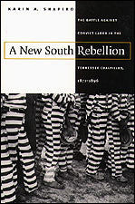 A New South Rebellion by Karin A. Shapiro