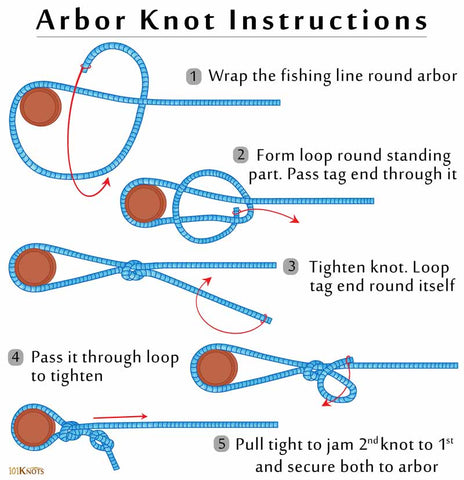 How To Tie Arbor Knot Infographic