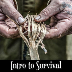 Intro to Survival (4306182766641)