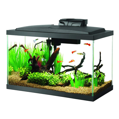 10 Gallon LED Aquarium Kit