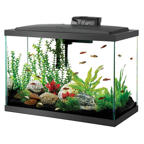 20 Gallon LED Aquarium Kit