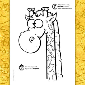 copyright-©-2017-the-animals-and-friends-coloring-book-volume-one-by-mr-gray-look-inside-05