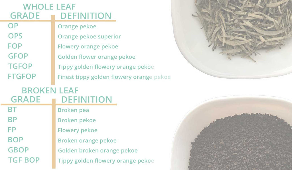 Whole Leaf Tea Grades and Broken Leaf Tea Grades