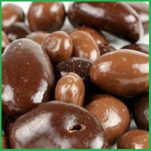 Chocolate Covered Fruits & Nuts Organic