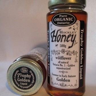 Liquid Golden Honey Organic 330g