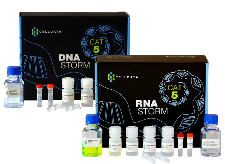 RNAstorm / DNAstorm Combination Kit
