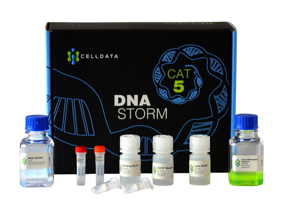 DNAstorm FFPE DNA Extraction Kit