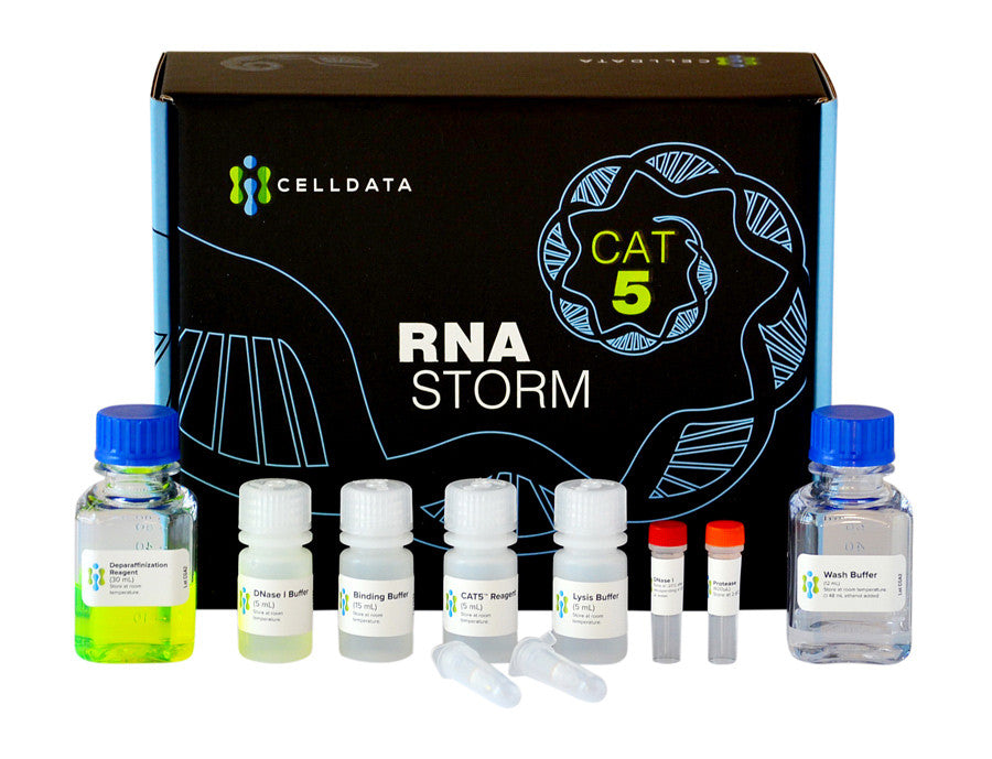 RNAstorm FFPE RNA Extraction Kit