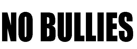 No Bullies - Vinyl Decal
