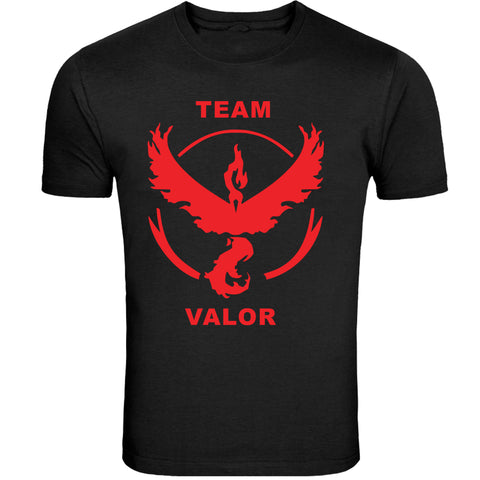 Team Valor Design