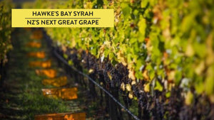 Hawke's Bay Syrah | NZ's Next Great Grape?