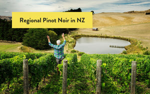 New Zealand Pinot Noir - Regional Differences of Pinot Noir