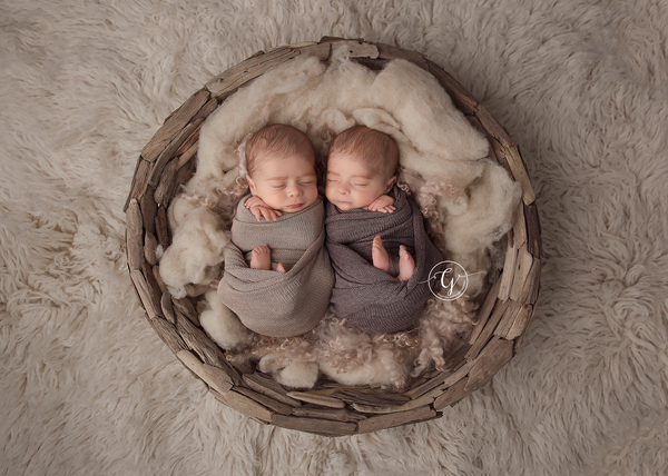 DRIFTWOOD BOWL - Newborn Photo Props Australia - Wood and Lace