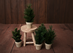 CHRISTMAS TREES ~ Mini Style - Wood & Lace Photography Props