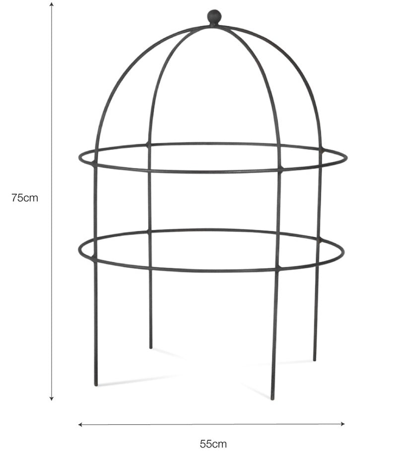 Barrington domed plant support - large