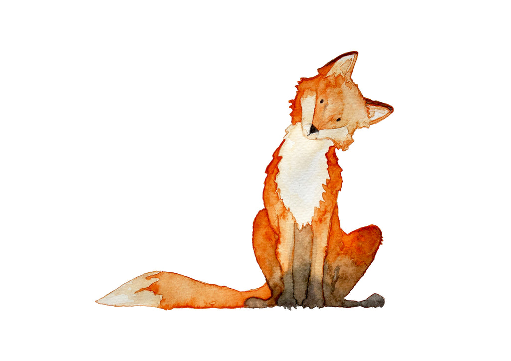 Fox – Limited Edition