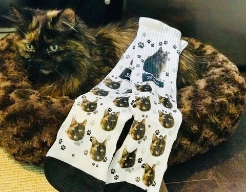 Custom Cat Sock