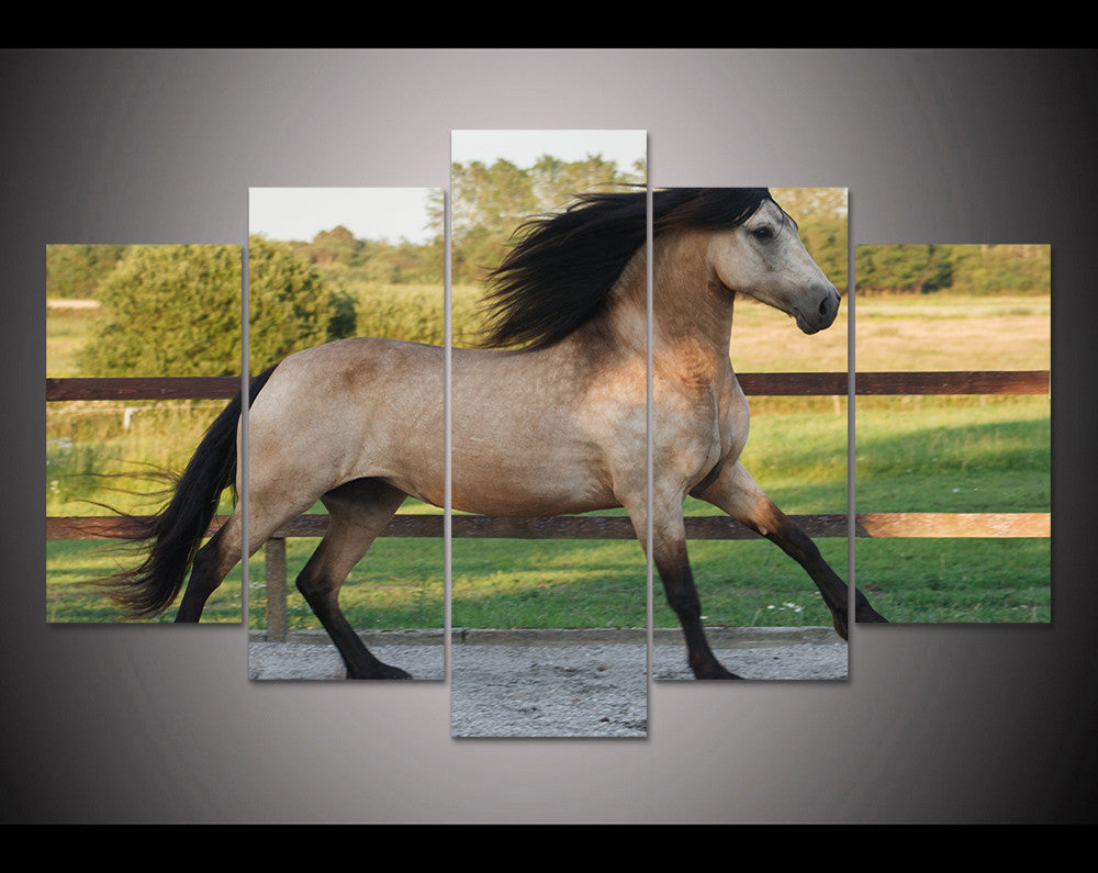 Limited Edition Buckskin Horse Canvas