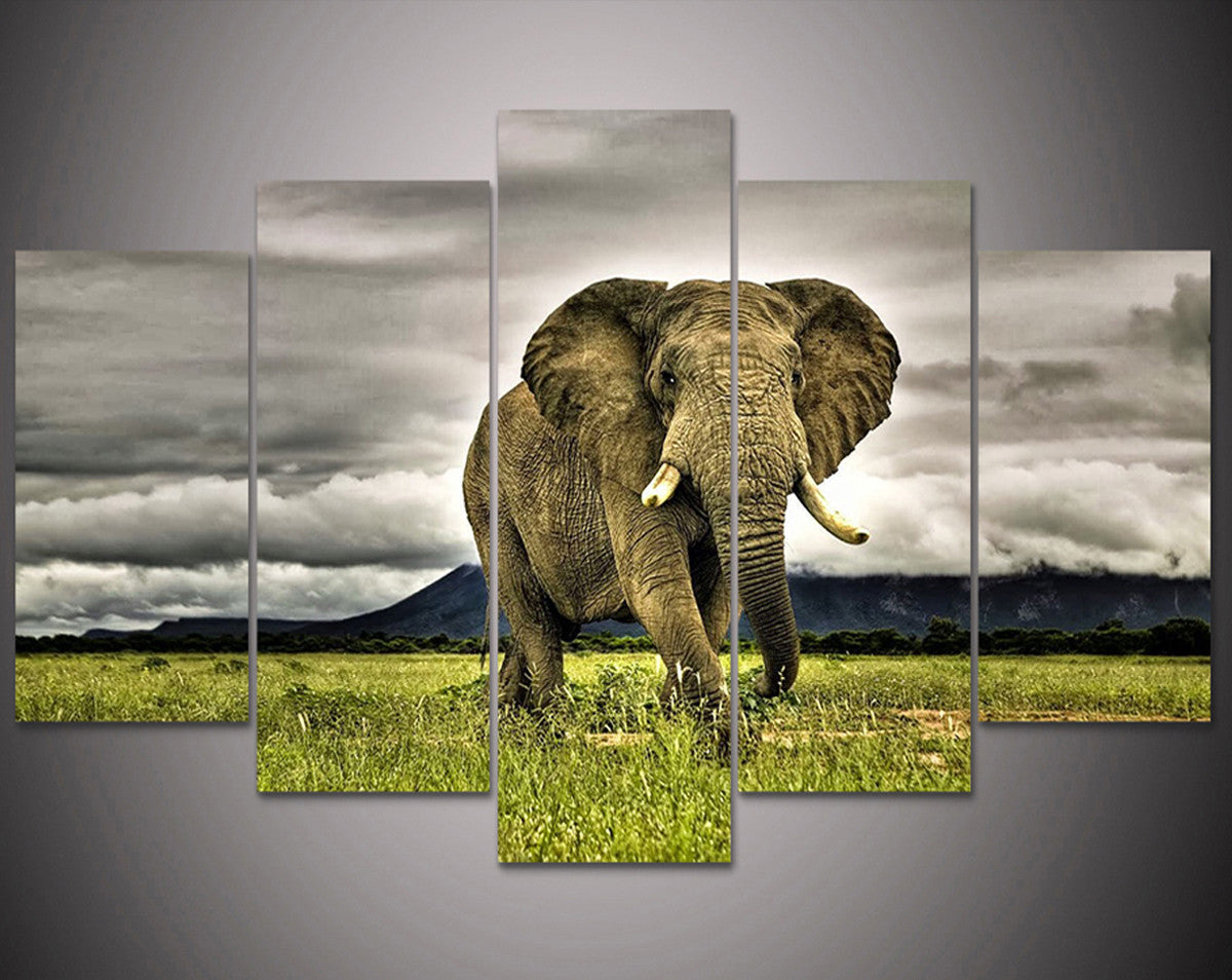 Delightful Elephant 5 Piece Canvas