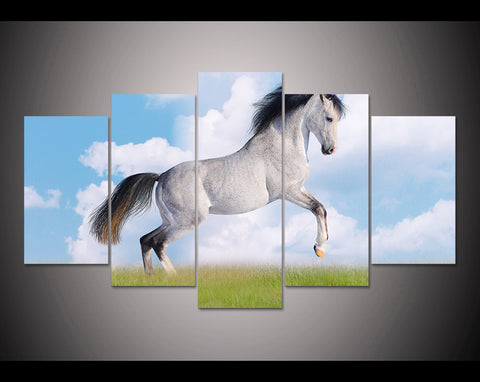 Limited Edition White & Grey Horse 5 Piece Canvas