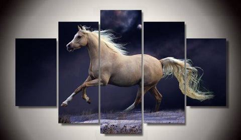 Limited Edition Delightful Palomino Canvas